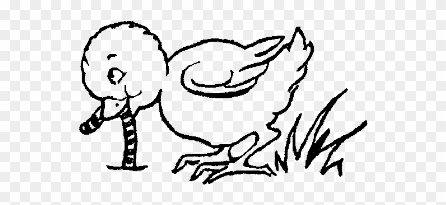 Bird eating clipart black and white image Chick Clipart Worm - Bird Eating Worm Clipart Black And White - Png ... image