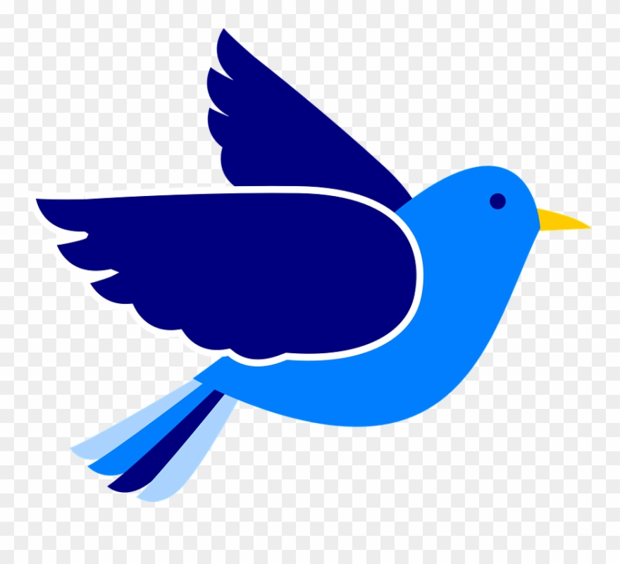 Pigeon fly blue png. Flying bird clipart