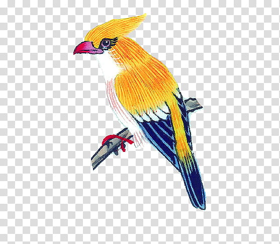Bird in a curve clipart svg freeuse stock Bird bymika, yellow and blue bird transparent background PNG clipart ... svg freeuse stock