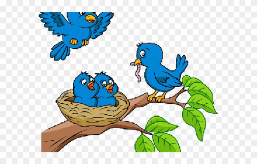 Cartoon Picture Birds In Nests Clipart (#457087) - PinClipart image black and white library