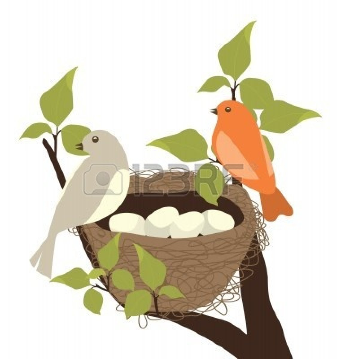 birds nest : Birds Nest | Clipart Panda - Free Clipart Images picture royalty free download