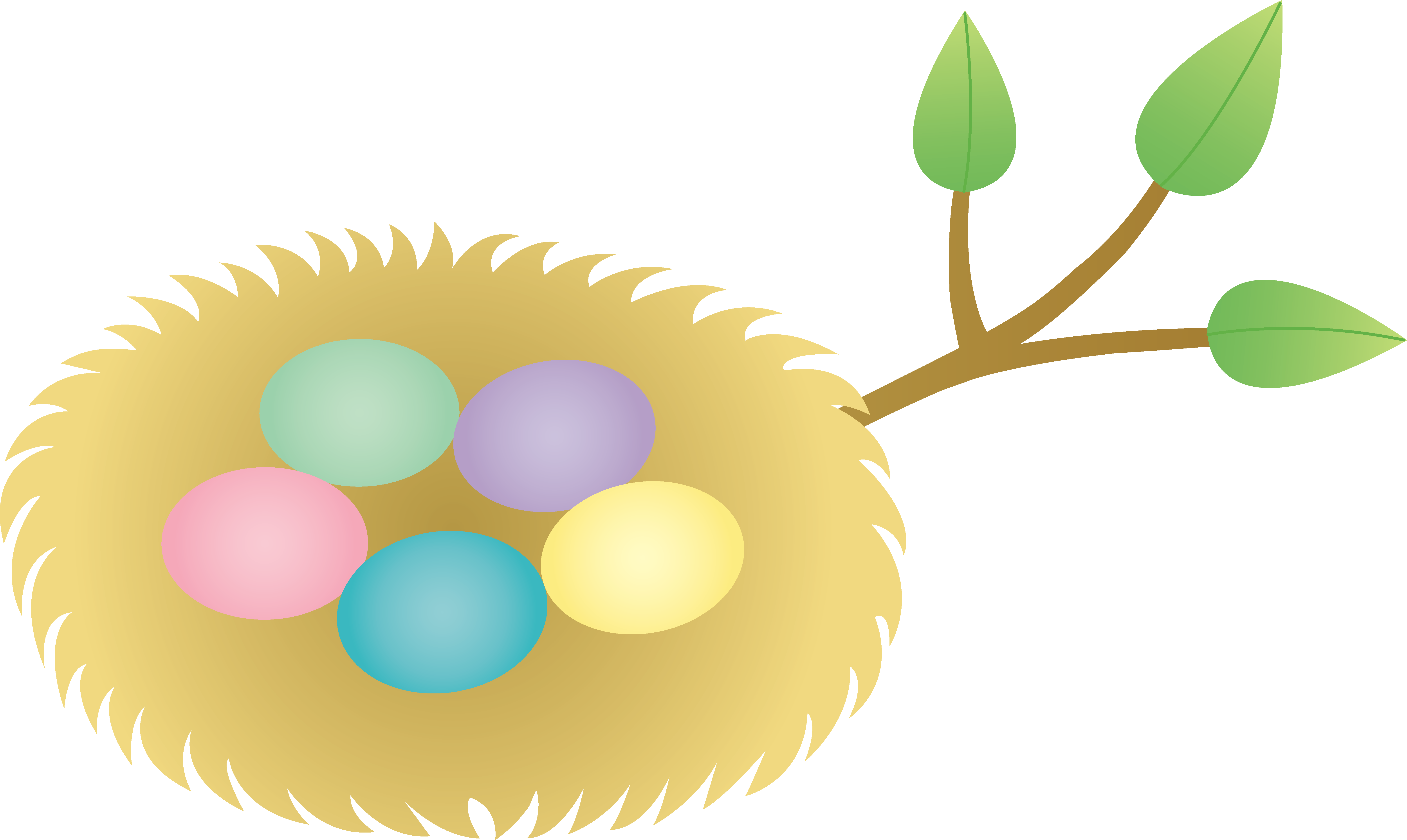 Bird nest in tree clipart png transparent download 28+ Collection of Bird Nest With Eggs Clipart | High quality, free ... png transparent download