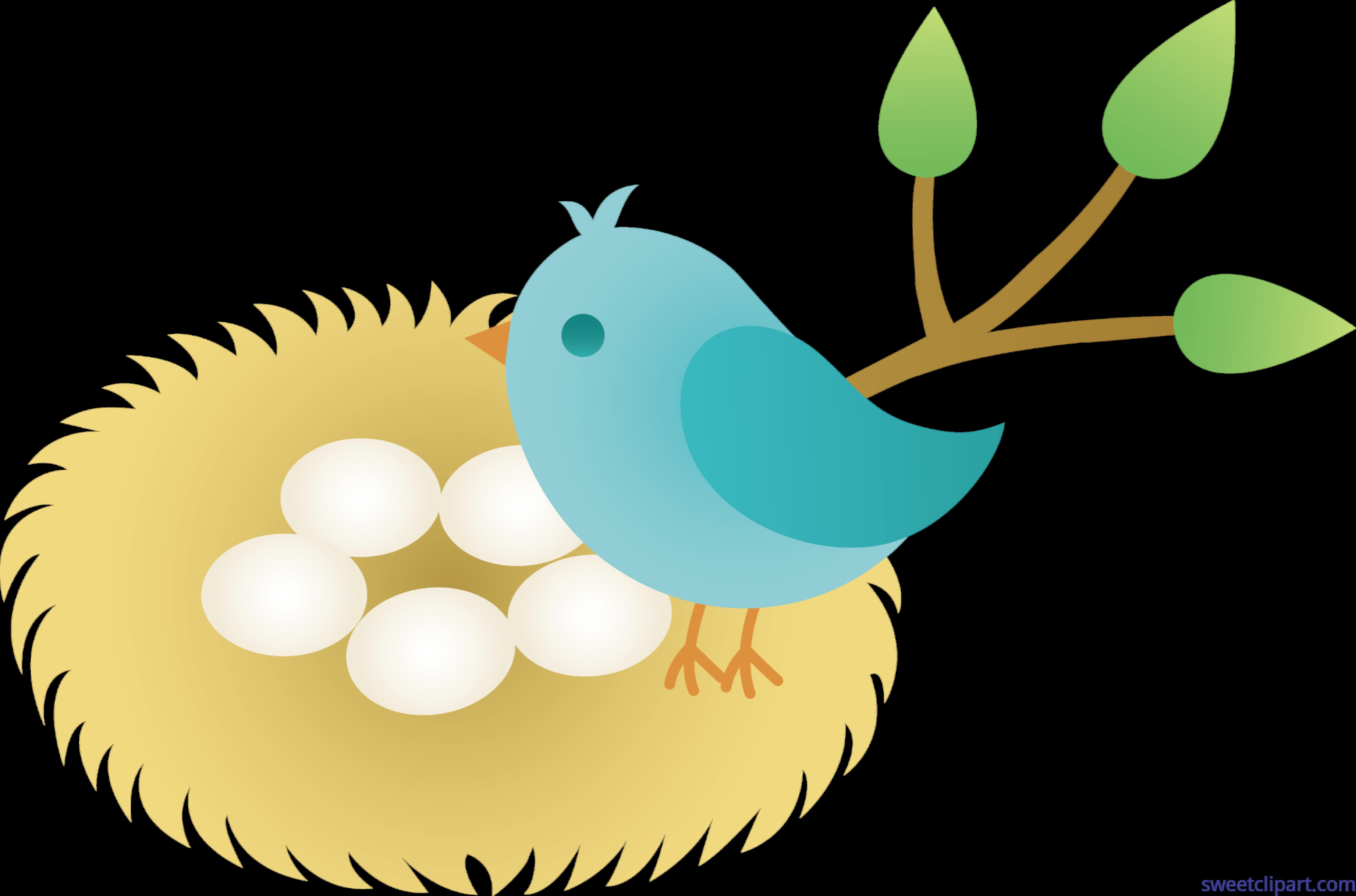 Bird nest in tree clipart vector library stock Unconditional Bird Nest Cartoon With Eggs Clip Art Sweet #14159 vector library stock