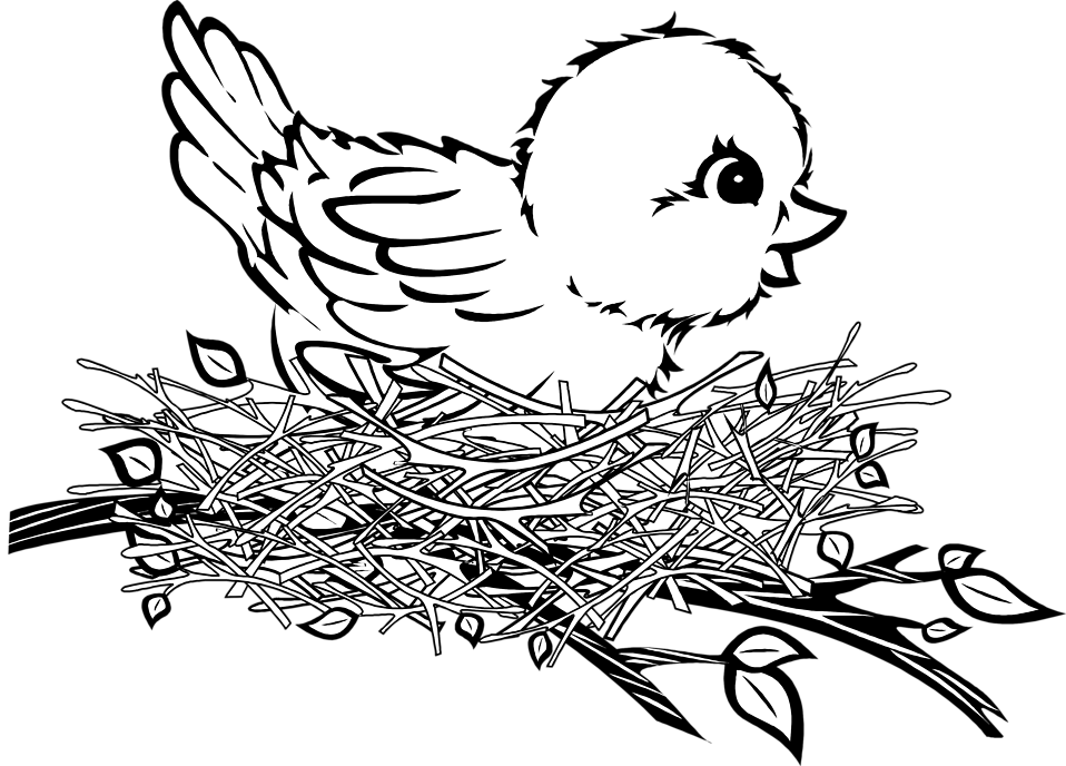 Bird nest in tree clipart vector transparent stock 28+ Collection of Bird In The Nest Drawing | High quality, free ... vector transparent stock