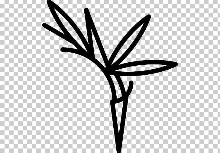 Bird of paradise clipart black and white jpg stock Bird-of-paradise Flower PNG, Clipart, Animals, Artwork, Bird ... jpg stock