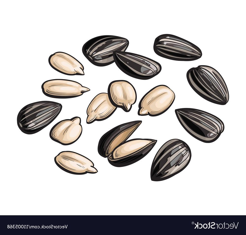 Clipart seeds clipart black and white download Best Sunflower Seeds Vector Pictures » Free Vector Art, Images ... clipart black and white download