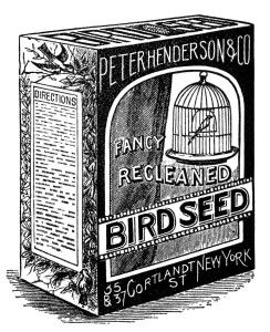 Bird seed clipart vector transparent vintage bird clipart, black and white graphics, bird seed image, old ... vector transparent