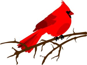 Cardinals clipart vector library stock Clip art illustration of a red Cardinal bird sitting on a branch ... vector library stock