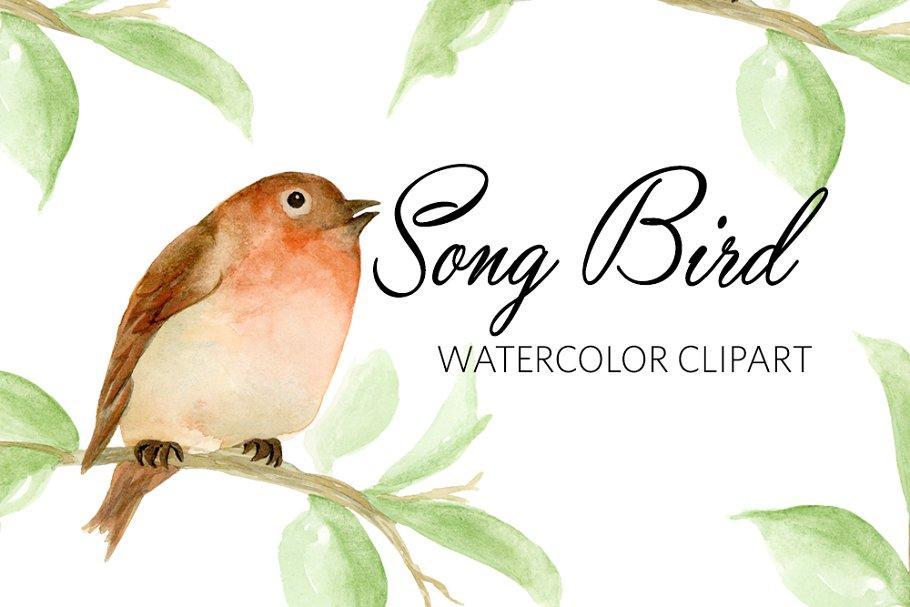 Watercolor Song BIrd Clipart jpg free stock