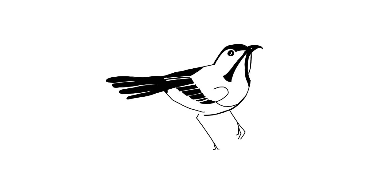 Bird Watching Funny Novelty Cartoon Hand Drawing by skstring clipart library stock