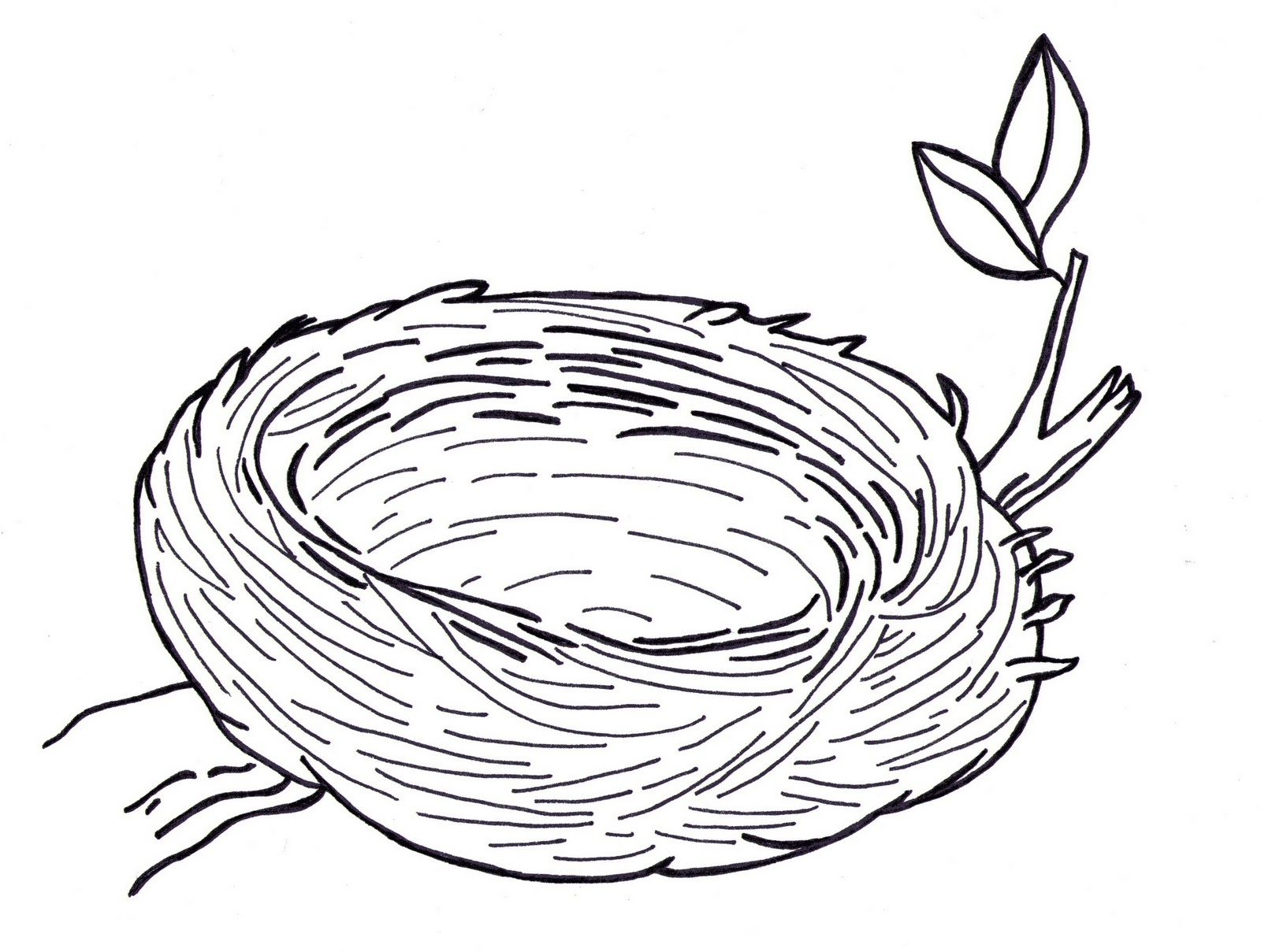 Bird\'s Nest Clipart Black And White – Pencil And In Color Bird\'s ... clip art transparent