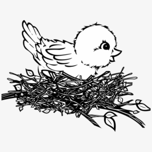 Nest Clipart Sparrow Nest - Bird In Nest Black And White #782498 ... clip black and white