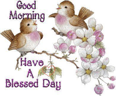 Birds good morning clipart clip art black and white download Blessed Birds Morning Pictures, Photos, and Images for Facebook ... clip art black and white download