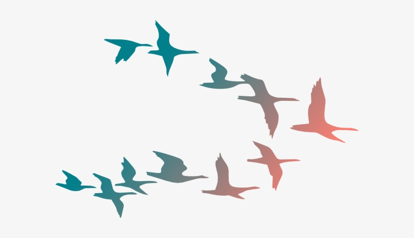 Birds in flight transparency clipart image free library Png Transparent Download Bird Flying Clipart - Colorful Flying Birds ... image free library