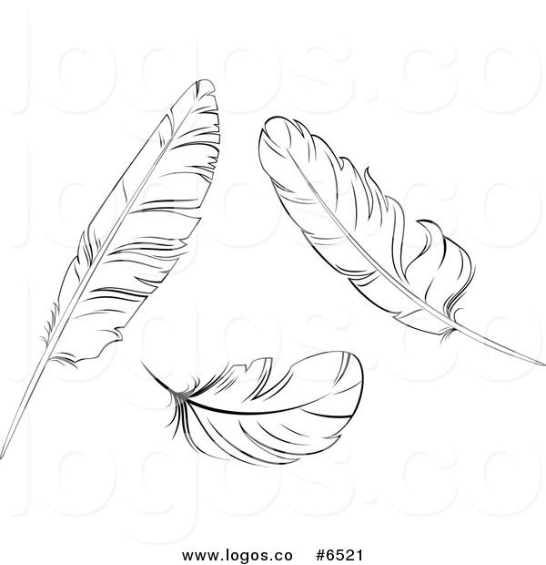 Birds of a feather clipart jpg download Pin by Carolyn Hunt on Coloring Pages | Bird feathers, Black, white ... jpg download