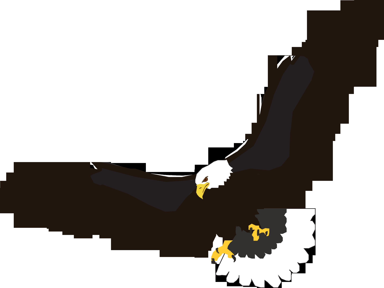 Birds of prey free clipart vector royalty free stock Native cliparts   Art   Eagle, Eagle bird, Eagle outline vector royalty free stock