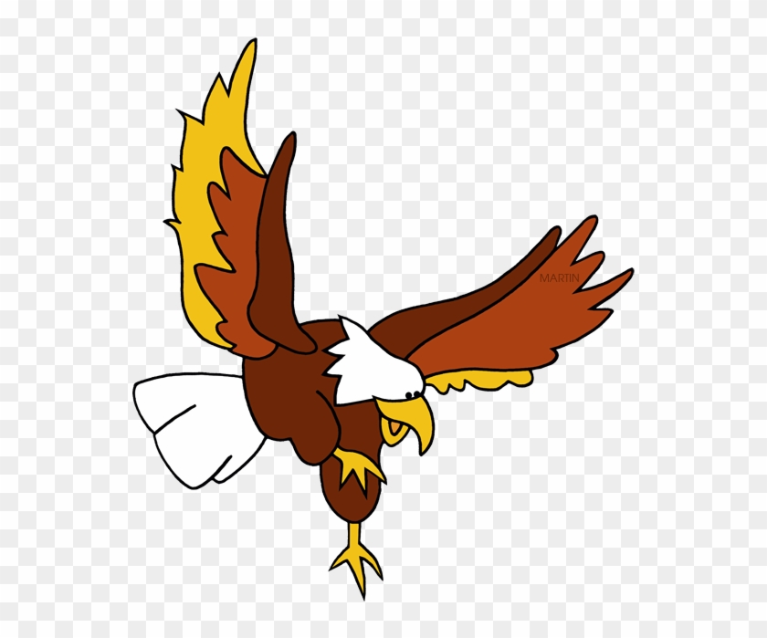 Birds of prey free clipart clip freeuse library Picture American At Getdrawings Com Free For Personal - Birds Of ... clip freeuse library