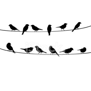 Birds on a wire clipart image royalty free stock Birds Resting ON Wire premium clipart - ClipartLogo.com image royalty free stock