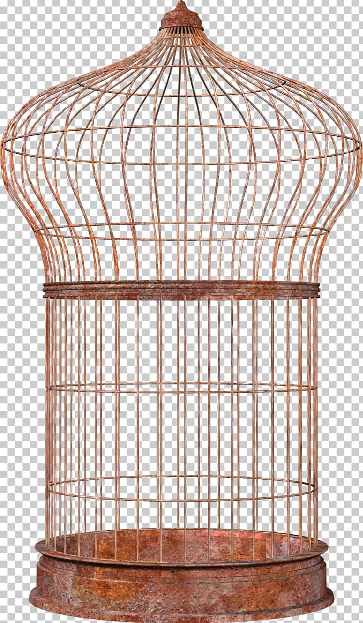 Birds on cell phone clipart library Bird Cell PNG, Clipart, Animals, Bird, Bird Cage, Cage, Cell Free ... library