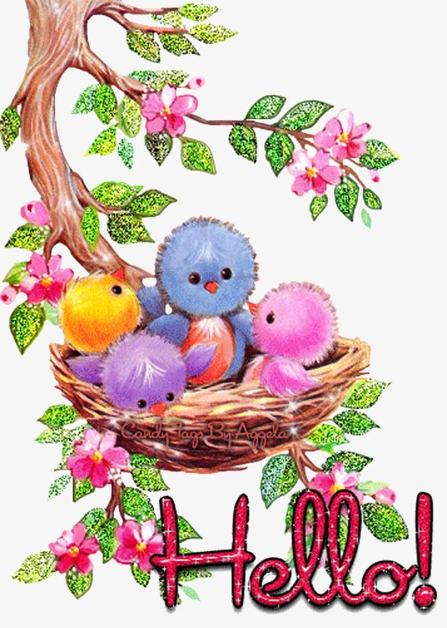 Birds saying hello clipart clipart library bird house | BIRDS OF A FEATHER | Hello pictures, Bird gif, Friends gif clipart library