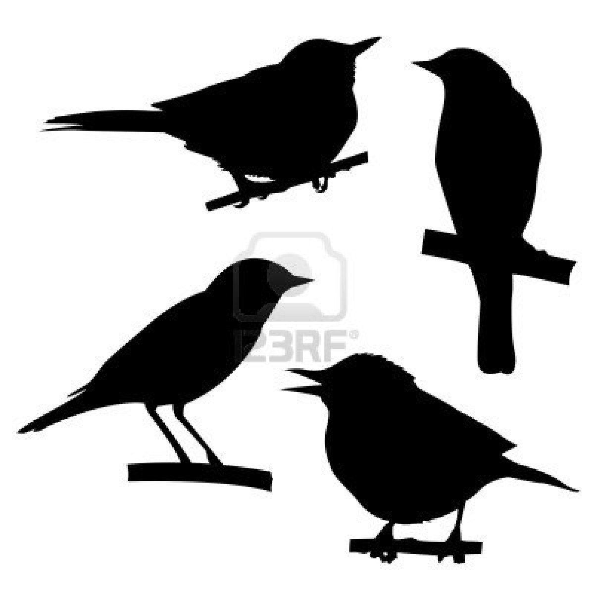Birds sitting on tree clipart jpg transparent stock Stock Vector | Silhouette | Bird silhouette, Birds, Bird on branch jpg transparent stock