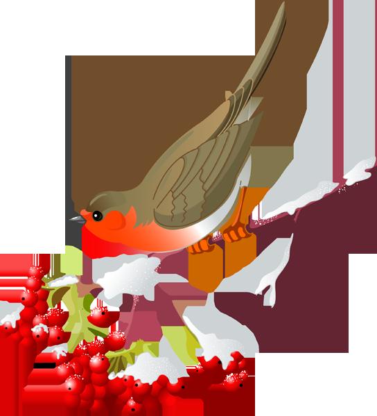 Birdswinter clipart svg Pretty Bird and Winter Berries | WINTER Clip Art ! | Bird sketch ... svg