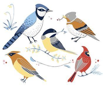Birdswinter clipart svg Winter Birds - Winter Clipart - Bird Clip Art - Cardinal Clipart ... svg