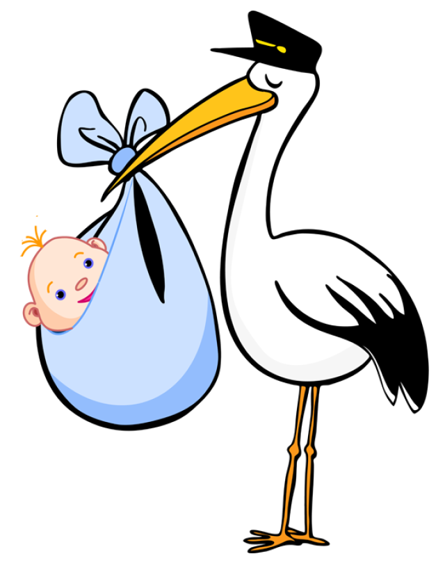 Clipart birth picture library Free Clip Art for Birth Announcements | thanksgiving | Stork baby ... picture library