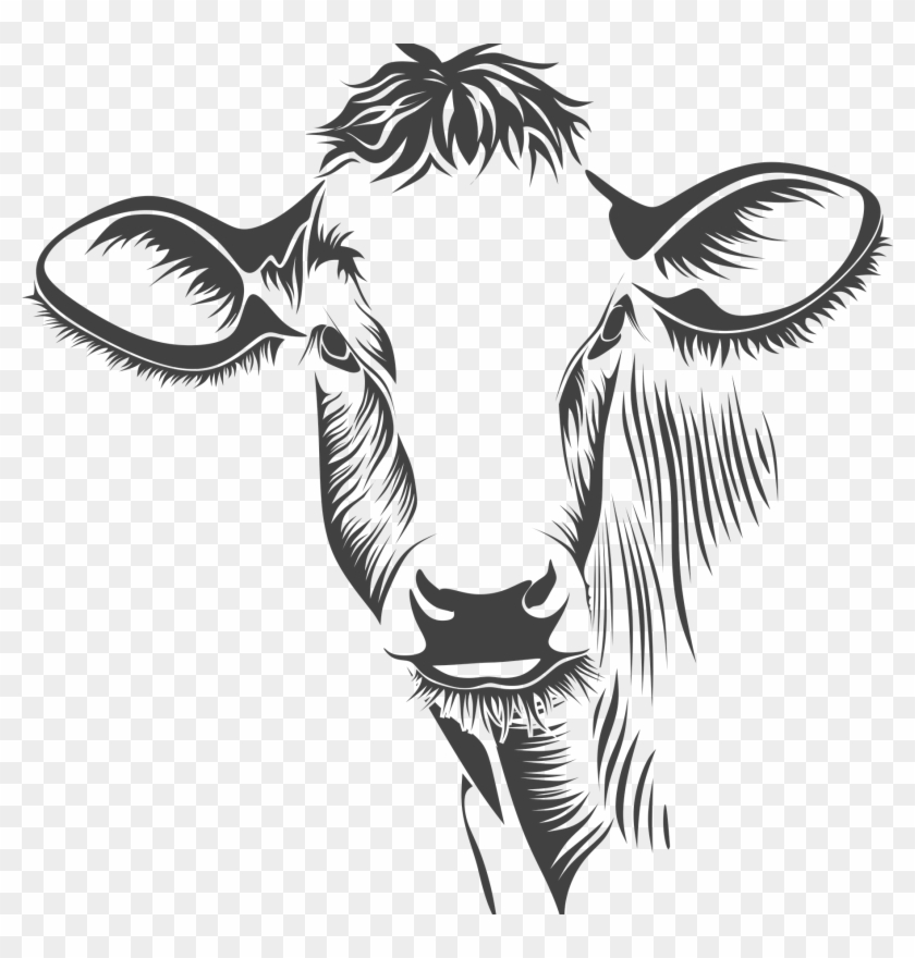Bison head clipart black and white clipart royalty free Bison Head Drawing At Getdrawings - Cow Vector Free Download, HD Png ... clipart royalty free