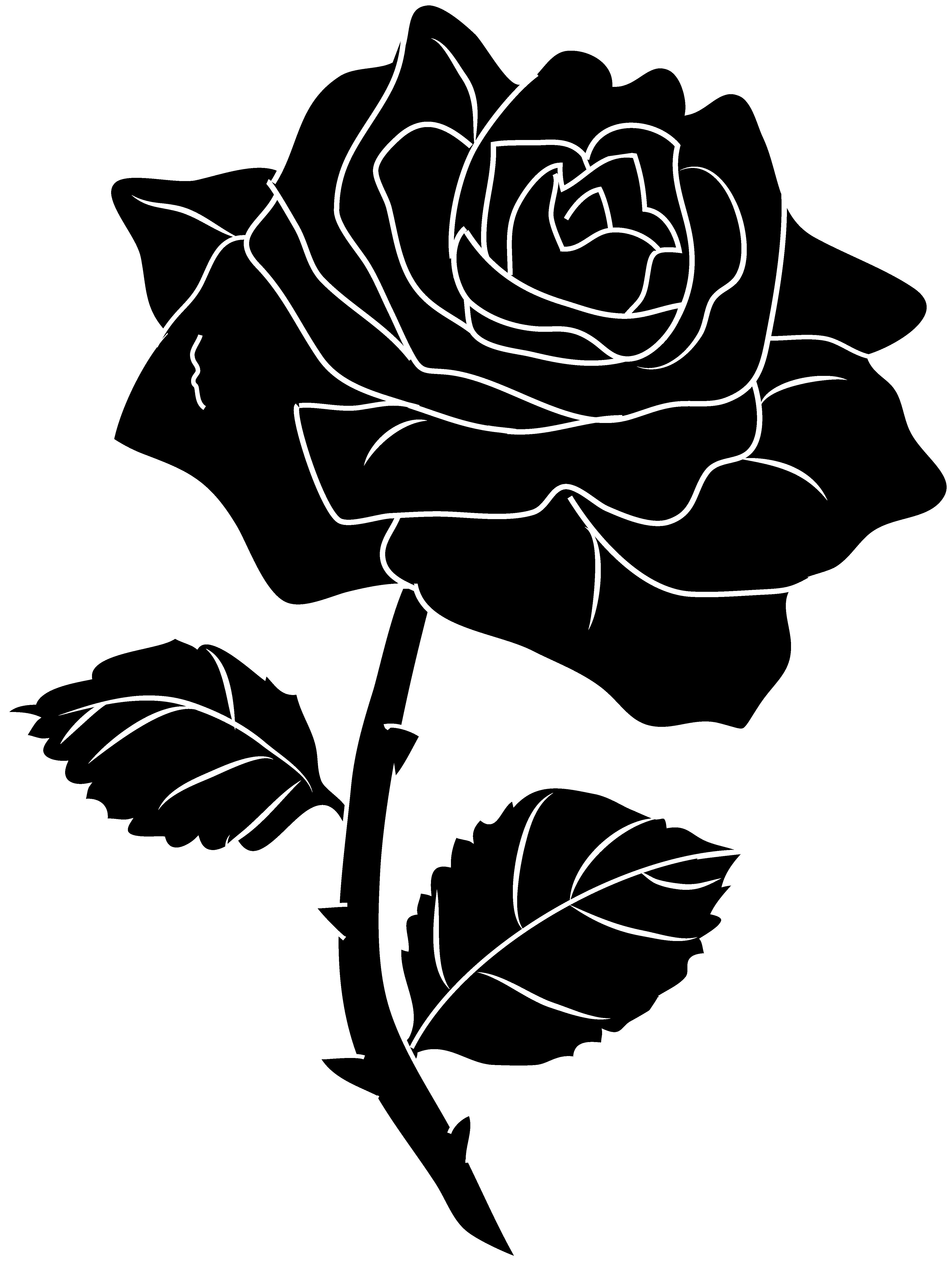 Rose black and white. Dark turkey clipart