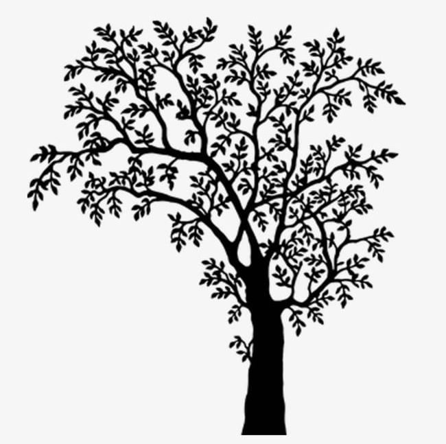 Black and white band plant clipart png clip stock Black And White Tree Branches PNG, Clipart, Black, Black And White ... clip stock