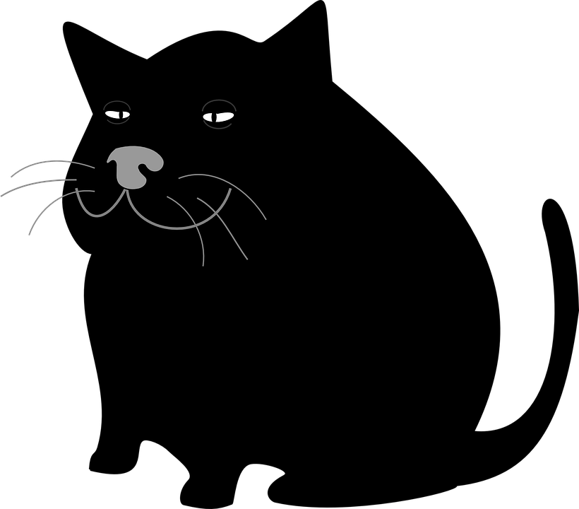 Black and white birman cat vector clipart clip art free Cat Graphic Group (79+) clip art free