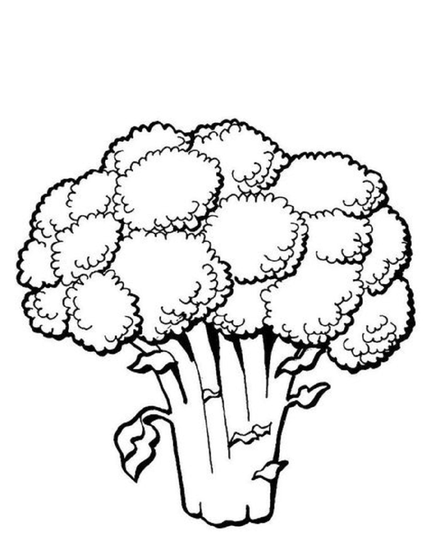 Black and white broccoli clipart clip art download Broccoli clipart black and white 1 » Clipart Station clip art download