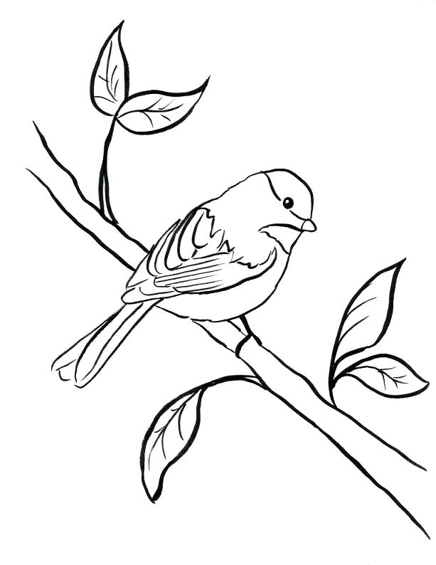 Black and white chickadee clipart banner black and white download Chickadee Line Drawing at PaintingValley.com | Explore collection of ... banner black and white download