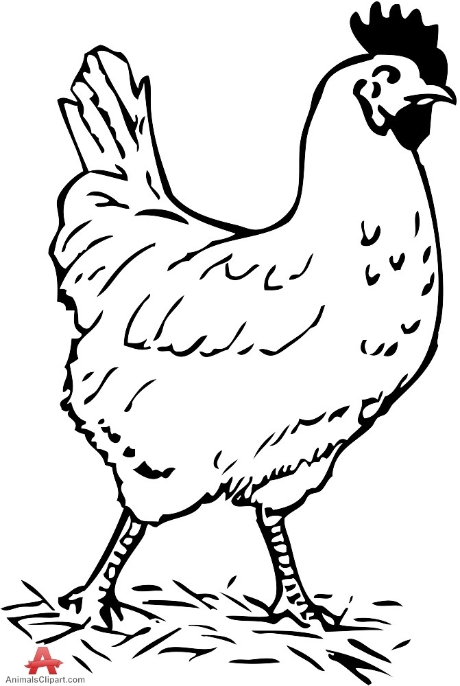 Black and white chicken clipart svg transparent stock Valuable Black And White Chicken Clipart 68 About Remodel Space ... svg transparent stock