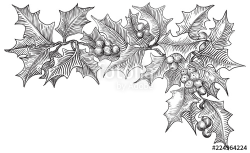 Black and white christmas clipart holly merry christms clipart free download Vintage Merry christmas border. Vector holly branches isolated on ... clipart free download