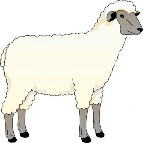 Clipart lambs png black and white library Pictures Of Sheep - Cliparts.co | lambs & sheep in 2019 | Vector ... png black and white library