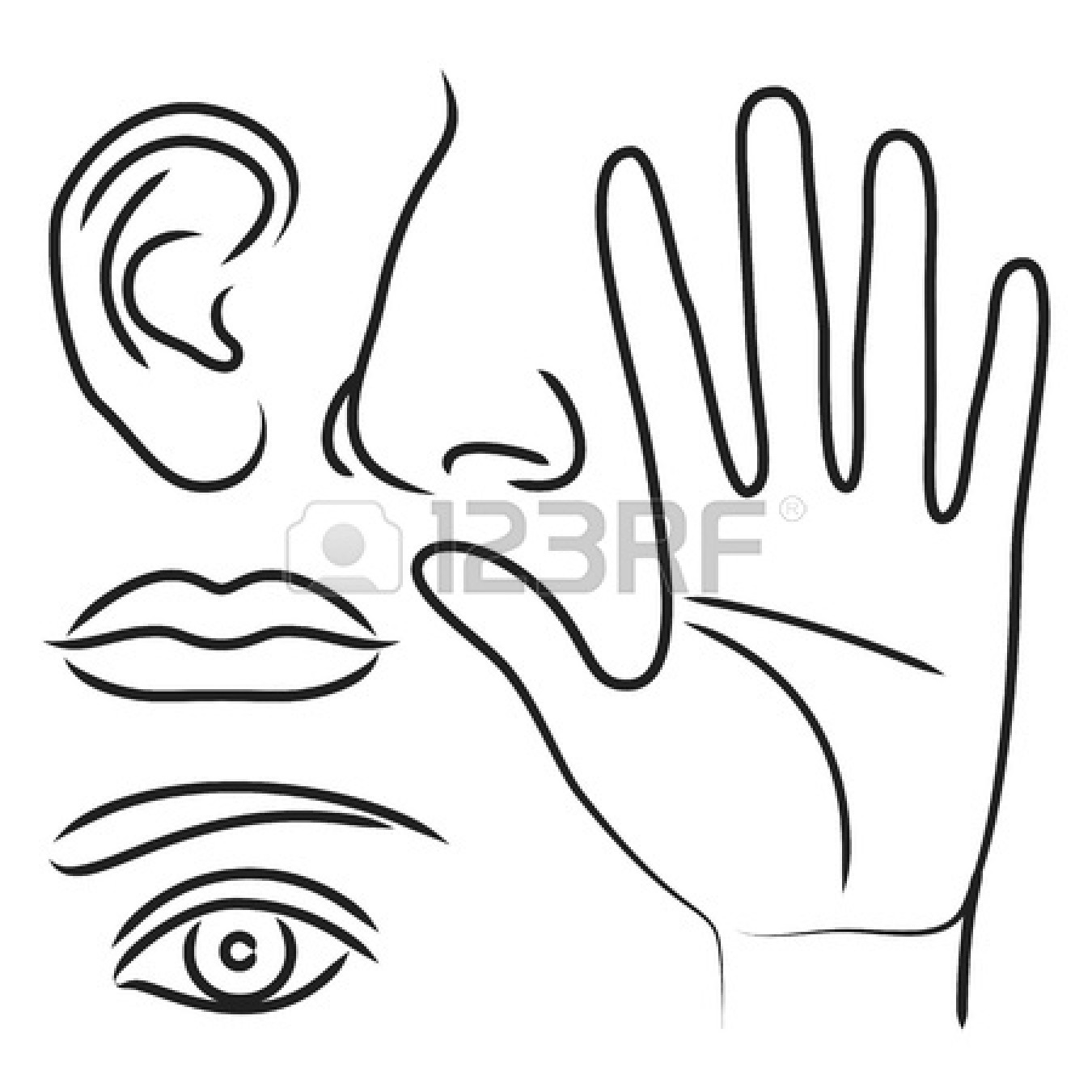 Finger in ear black & white clipart clip art transparent download 5 Sense Clipart | Free download best 5 Sense Clipart on ClipArtMag.com clip art transparent download