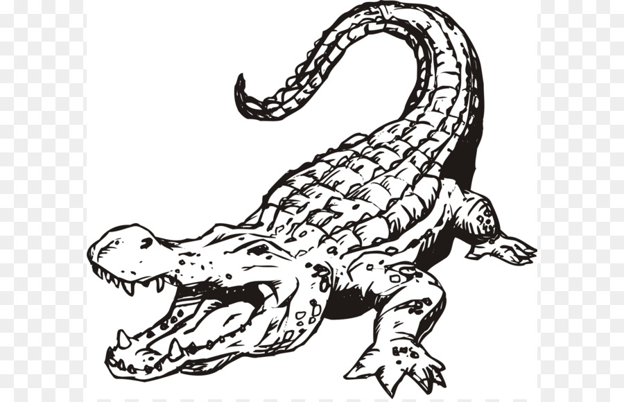 Black and white clipart alligator clip free stock Black Line Background png download - 1600*1418 - Free Transparent ... clip free stock
