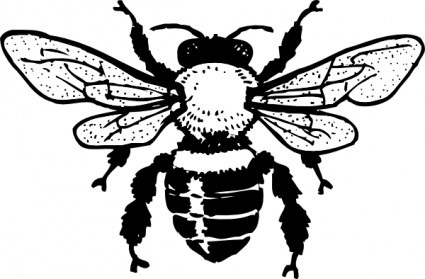 Black and white clipart bees clipart transparent library Bee Clipart Black And White | Clipart Panda - Free Clipart Images clipart transparent library