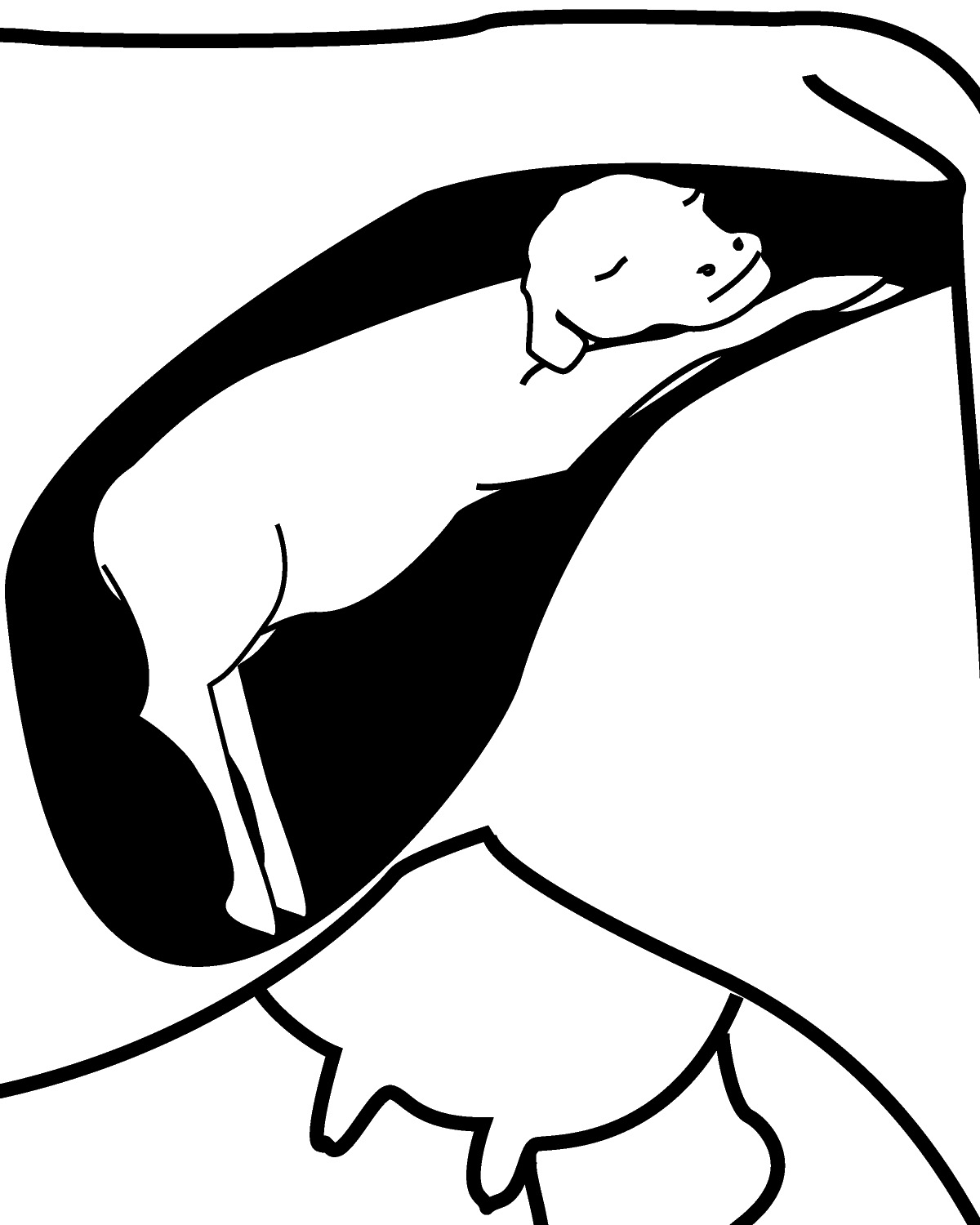 Black and white clipart cow with no legs graphic library E-1006 Calving Time Management for Beef Cows and Heifers » OSU Fact ... graphic library