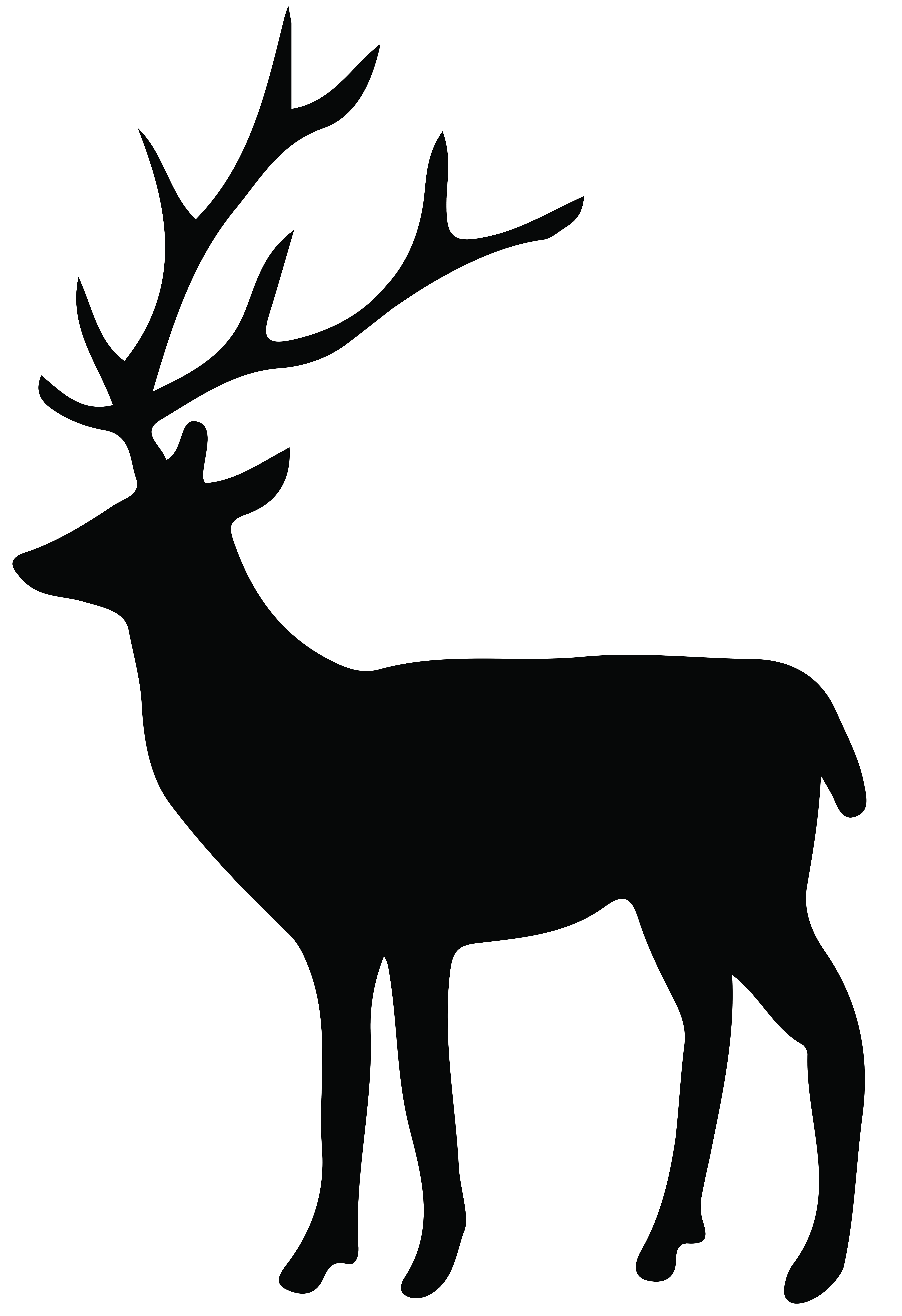 Whitetail buck clipart without box