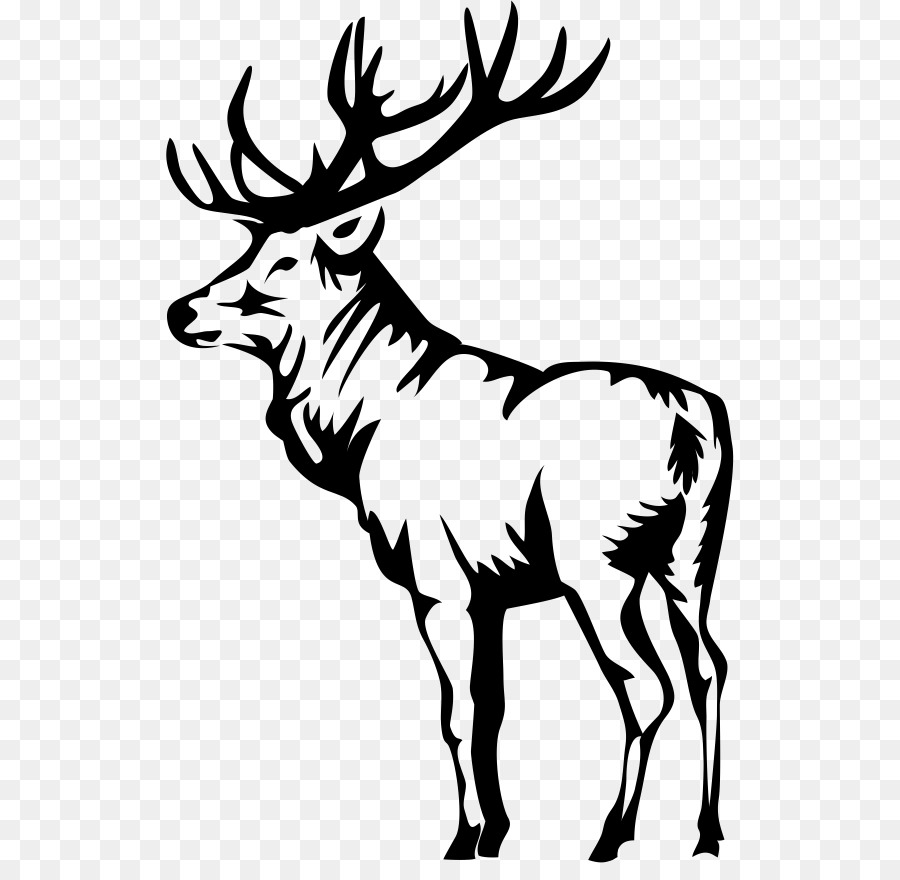 Black and white clipart deer by trees graphic Tree Sketch clipart - Deer, Drawing, Illustration, transparent clip art graphic
