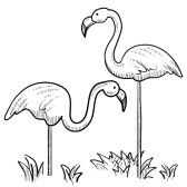 Black and white clipart flamingo library flamingo clip art black and white - Google Search | flamingo clip ... library