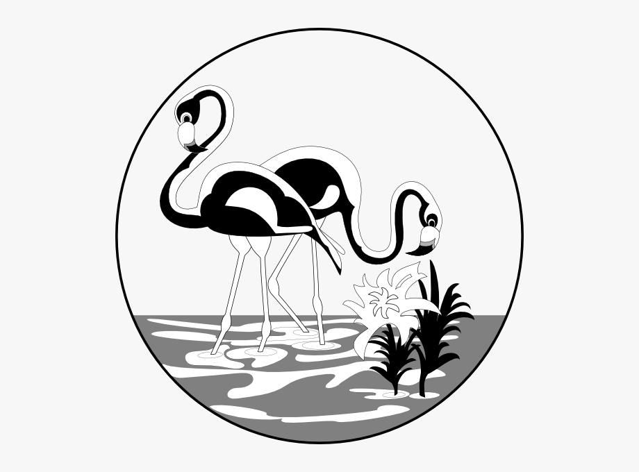 Black and white clipart flamingo png Black And White Flamingos Clip Art - Black And White Flamingo ... png