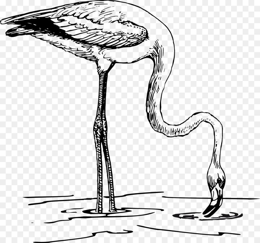 Black and white clipart flamingo clipart free stock Black And White Book clipart - Flamingo, Bird, Tree, transparent ... clipart free stock