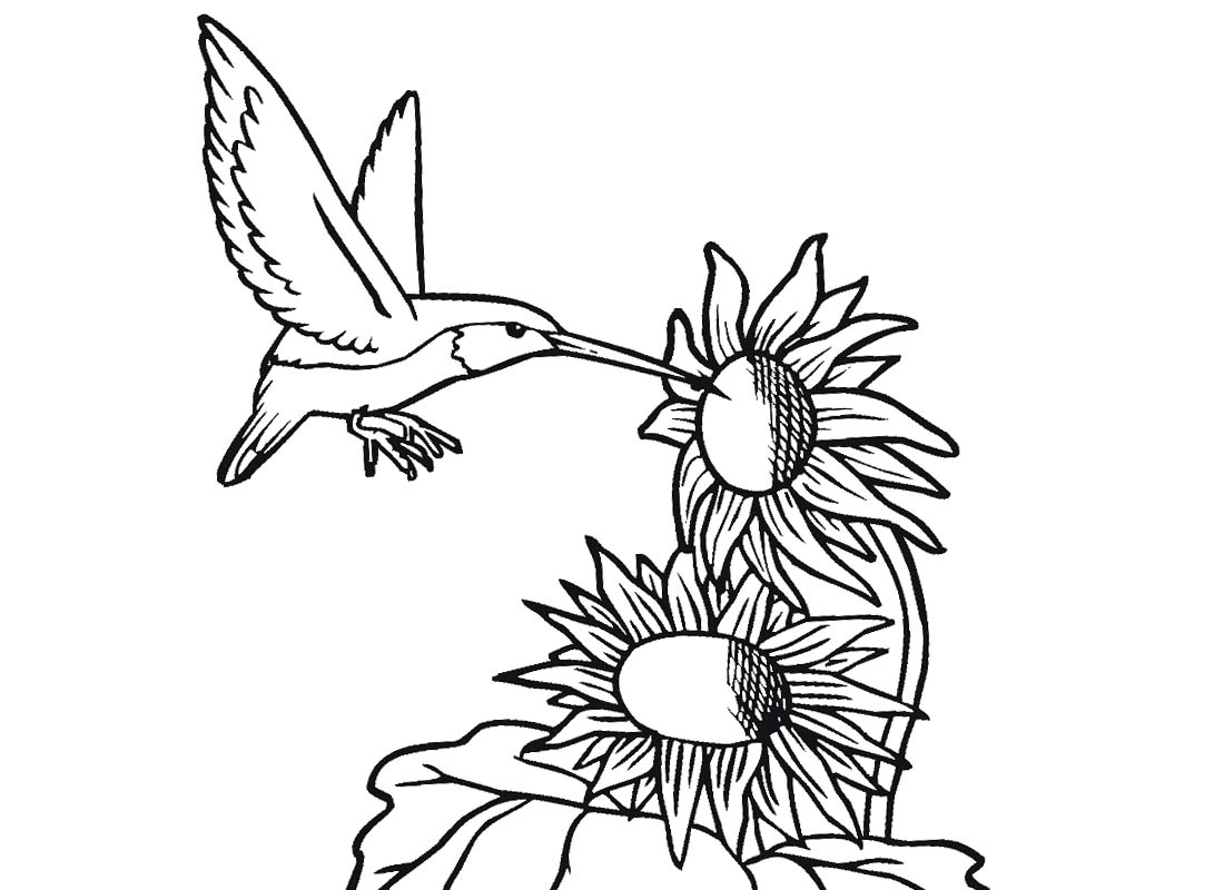 Hummingbird Clip Art and Flower Black and White - Clipart1001 - Free ... picture royalty free library