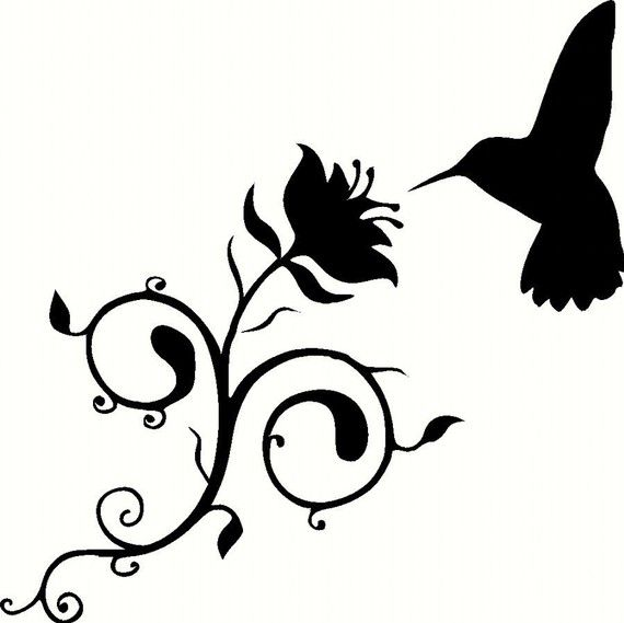 Humming Bird Graphics | Free download best Humming Bird Graphics on ... picture freeuse library