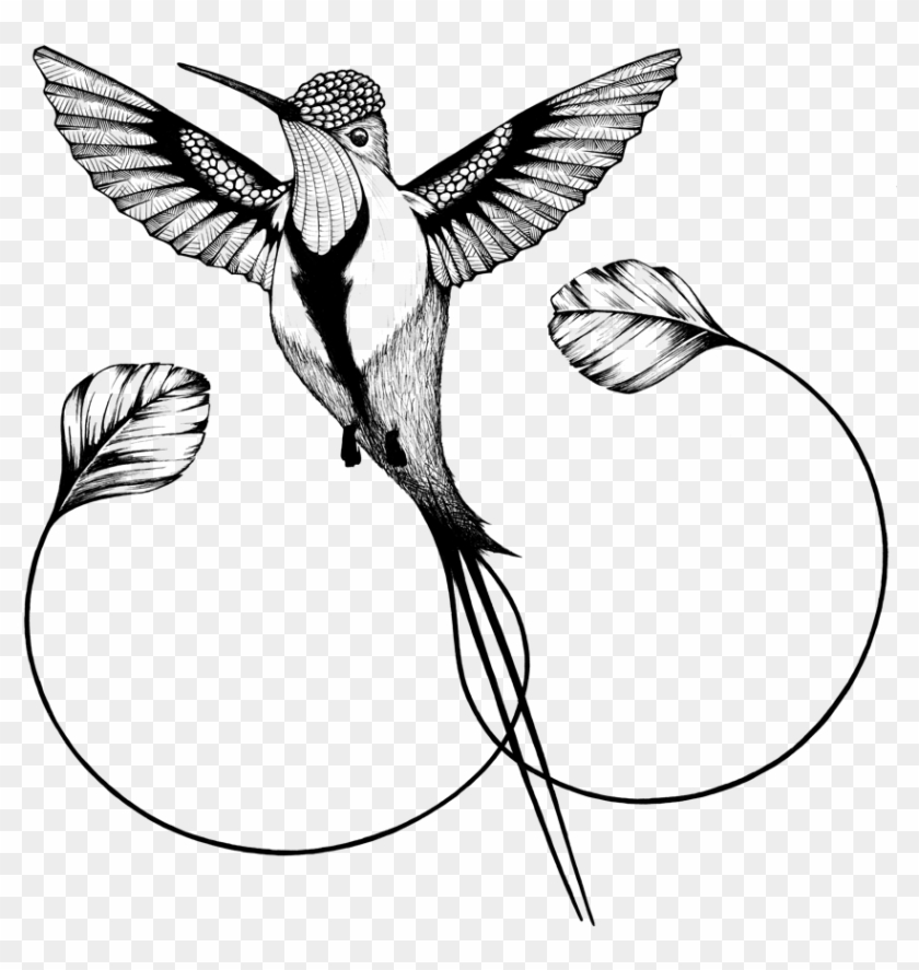 Hummingbirds Clipart Hummingbird Png Transparent Clip - Andreas ... clipart transparent stock