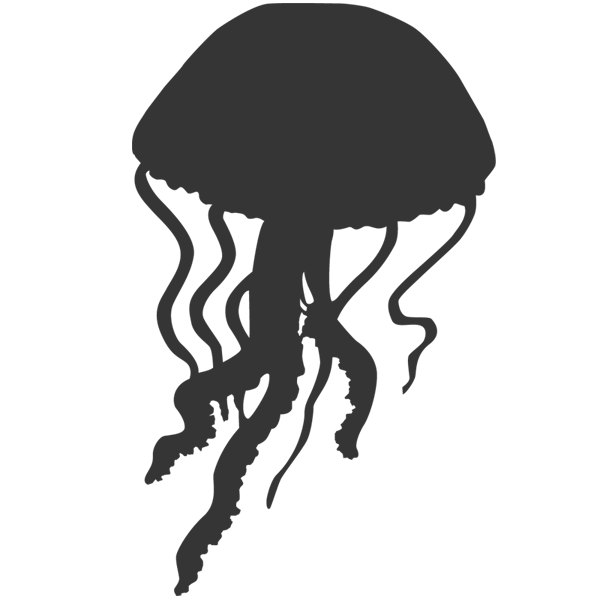Black and white clipart jelly fish clipart black and white download Jellyfish PNG images free download clipart black and white download